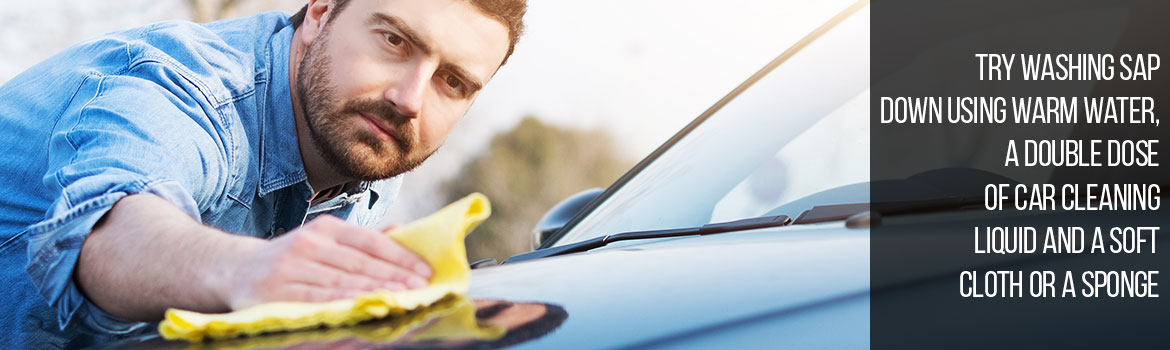 How to Remove Sap off a Car?